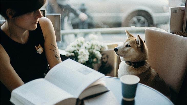 lecturas y poemas para amigo