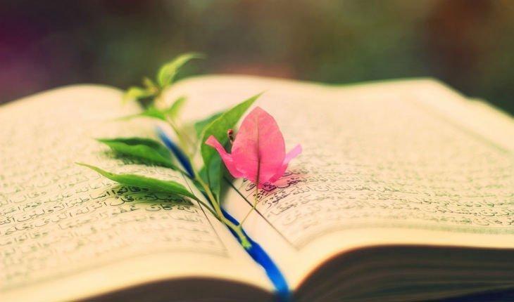 Salmos Para Bodas 6 Lecturas Para Una Ceremonia Religiosa